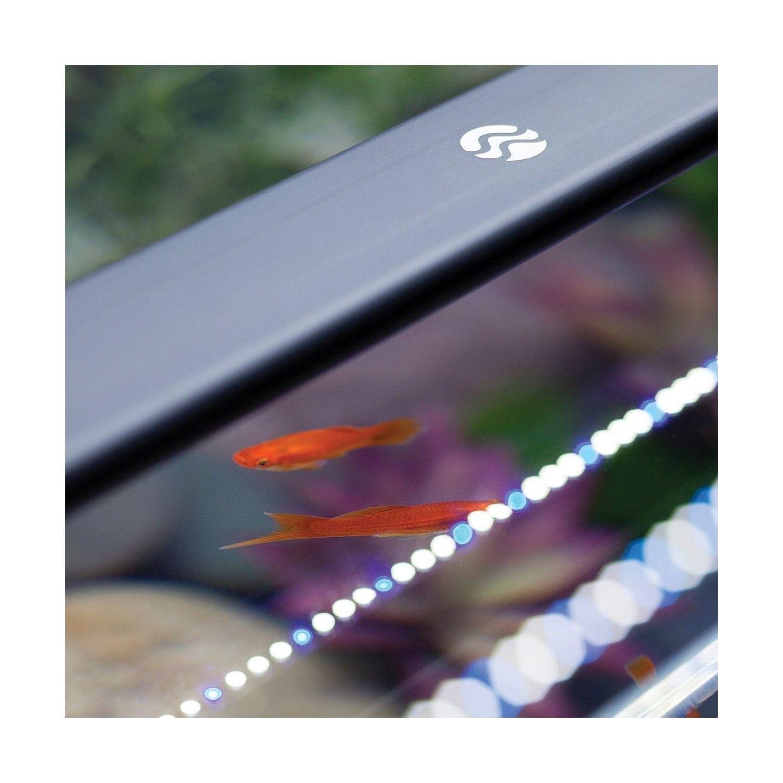 y Current LED Satelite 60 Led plantadospeces acuarios marinos para Luces 90cm kOPuiTXZ