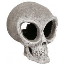 BLUE RIBBON EXOTIC ENVIRONMENTS ALIEN SKULL 4.5X5.5X5.5IN